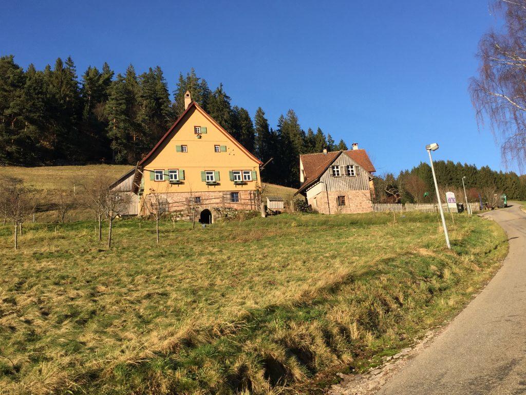 Morlok-Hof