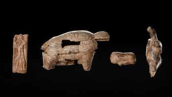 Permalink zu:Archäologisches Welterbe im Landesmuseum